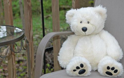 bear-fstop-5